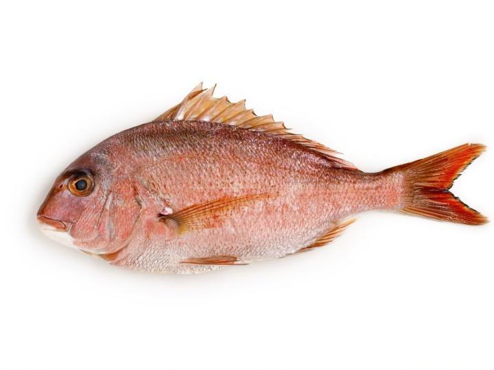 鯛 胃腸の働きを良くし、余分な水分を排出