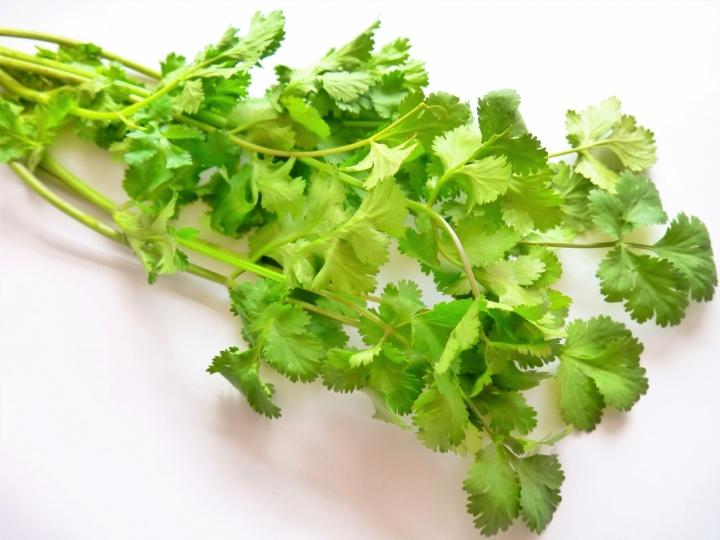 パクチー 胃腸を助けて消化不良やゲップを改善し、余分な水分を排出(実はコリアンダー)