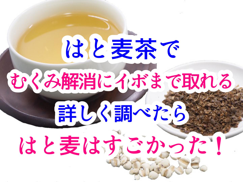 はと麦茶はむくみやイボに良い⁉︎詳しく調べたらハトムギはすごかった!